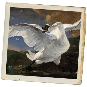 Jan_Asselijn_-_The_Threatened_Swan